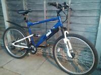 Apollo Mountain Bike
