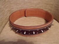 XXL dog collar italian leather tan and chocolate with studs
