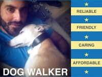 Dog walker in the Lambeth area