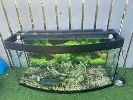 260 litre Jewel tropical fish tank with extras