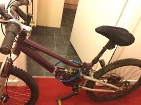 Unisex adult bike for sale