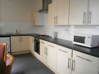 5 bedroom flat available Roath