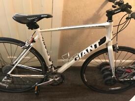 Men's giant rapid road bike