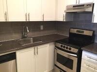 Fully Renovated Bachelor in Davisville - Utilities Included!