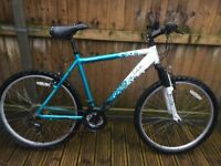 Apollo Twilight Mountain Bike
