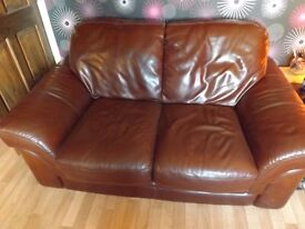 Endurance Brown Leather Two Seater Sofa