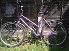 Woman bike gear