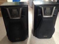 Pair of technics speakers