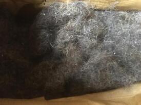 Horse hair for upholstery etc free!