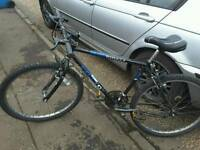 Men's or boys mountain bike with new sadle,,in working order,