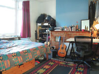 Nice double room in a lovely house share