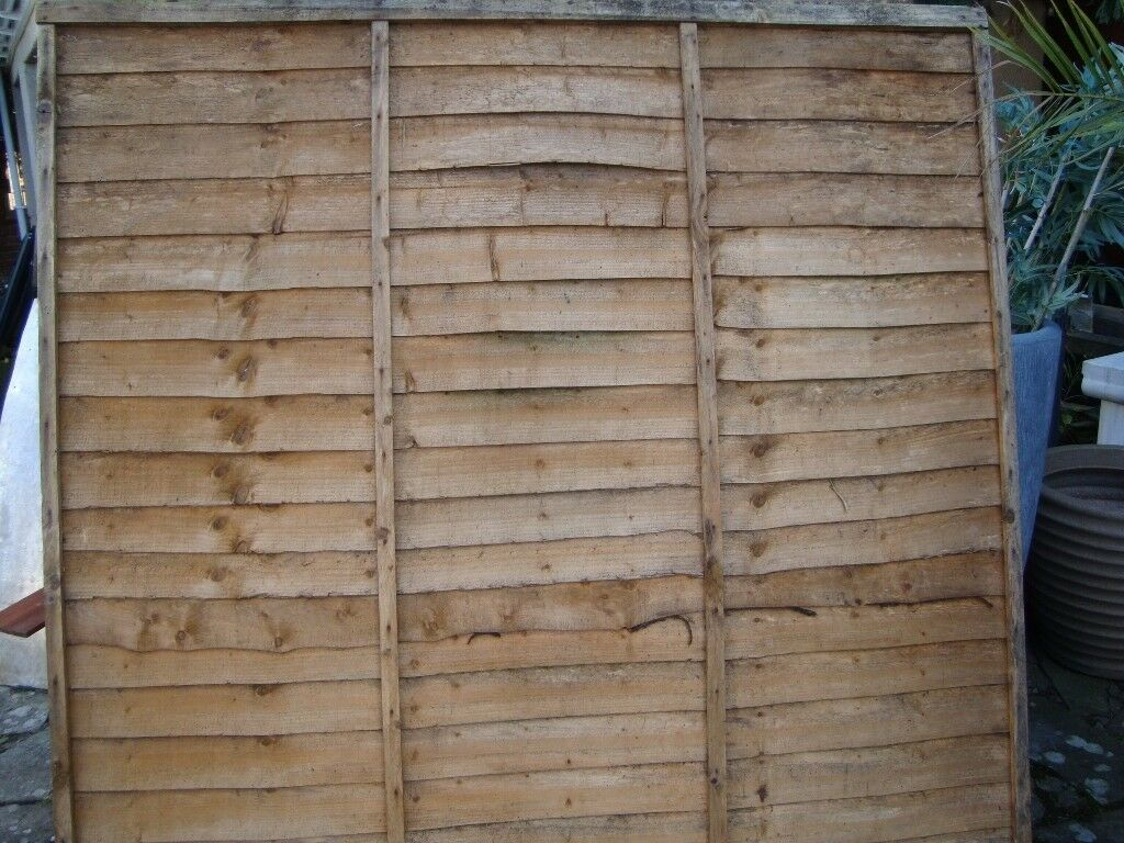 5 never been used 6ft x 6ft fence panels faded due to storage 5 5 never been used 6ft x 6ft fence panels faded due to storage 5 each baanklon Image collections