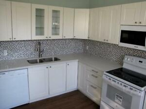 LOVELY UPDATED 3 BEDROOM HOME IN THE MIDST OF DOWNTOWN ELGIN ST.