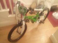 **Brand new** 20 Inch Nitro Green Bike