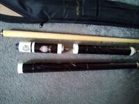Detailed snooker cue