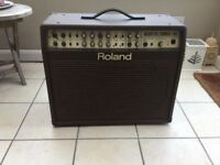 Roland AC100. Acoustic Amp, US made, built in chorus and reverb. Anti feedback and mic inputs.