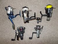 5 x spinning reels