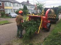 Tree/ hedge maintenance /site/ garden clearance