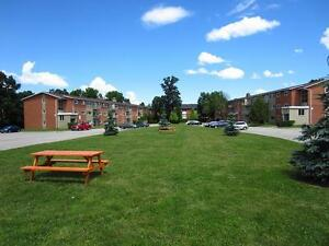 Ideal for Fanshawe students! London 1 Bedroom Apartment for Rent London Ontario image 2