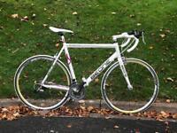 BeOne Blizzard Road Bike. Large frame.