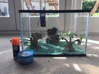 24 Litre Fish Tank with Filter