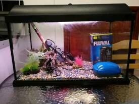 Elite Fish Tank, Full Set Up with Accessories & Equipments, 60x30cm