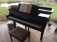 As new Spicer baby grand grand piano in black - hardly used