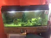 3ft Fish tank and stand full set up NO FISH