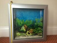 Fish tank picture style
