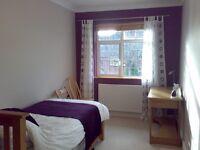 Bright Single room and en suite bathroom in quiet area of Hove (Park)
