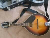 Ozark mandolin with hard case