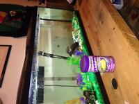 Fish n fish tank