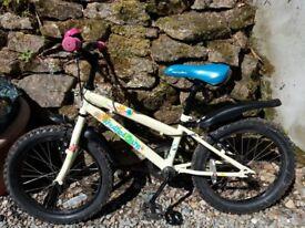 Kids Apollo Mountain bike