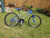 Shogun child's bike