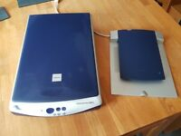 Epson Perfection 1240U scanner with transparency adapter