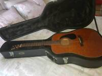 Farida Guitar with Case