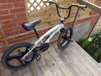 Zinc Bmx with front and rear stunt pegs