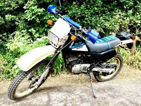 Suzuki, 1994, 198 (cc)