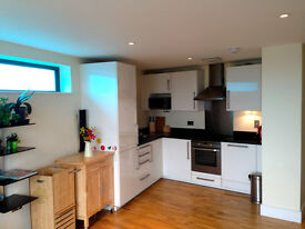 1 Large Modern Double Furnished Bedroom, Very Close to Langdon Park DLR Z2, Short Let Considered