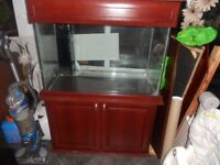3 ft x 2ft fish tank and stand