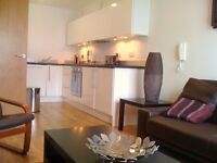 LARGE MODERN FURNISHED 1 BED 1 BATH IN THE CITY CENTRE