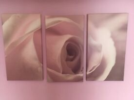 3 Piece Beautiful Rose wall canvas