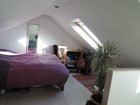 Lovely Loft Room in Friendly Houseshare