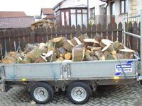 Firewood / Logs