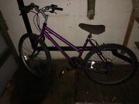 Women's bike 24 inch wheels like new bargain