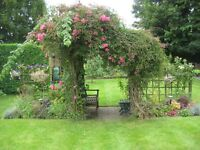 BASINGSTOKE PLEASANT GARDENS FROM JUNGLES TO WEEDING from £11 per hour hands on gardening