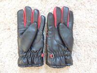 Ski Gloves - Men's