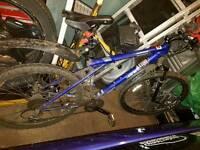 Gt med - large 21 speed mountain bike