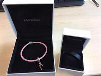 New pandora bracelet and charm