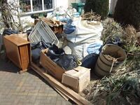 Waste removal - Garden waste clearance - Man with a van